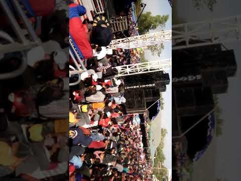 New pallapa live kerep