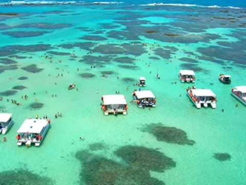Maragogi é um paraíso tropical. Suas águas calmas, azuis e cristalinas nos remete à sensação de que estamos no Caribe.Simplesmente maravilhoso!!!!!!