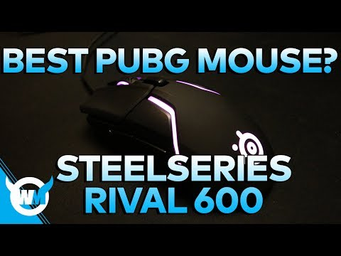 Best Gaming Mouse? 2018 SteelSeries Rival 600 Unboxing + Review - PUBG Gameplay