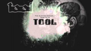 THE ELECTRO/ACOUSTIC TRIBUTE TO TOOL (FULL ALBUM)