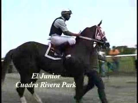 Carrera de caballos,