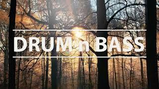 Oak Tree Slumber - Flat Theory (DRUM n BASS)