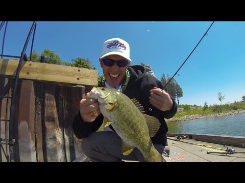 Smallmouth Bass Fishing Experience on Sturgeon Bay