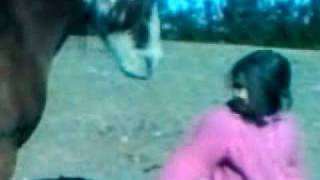 little girl tossed by horse.3GP