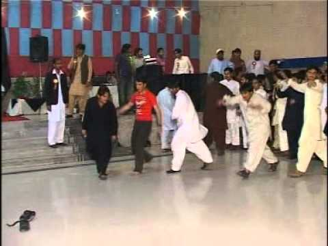 Musharaf Bangash New Song ( Kale Ta Ba Kala Zoo ) Zari University Faisal Abad video