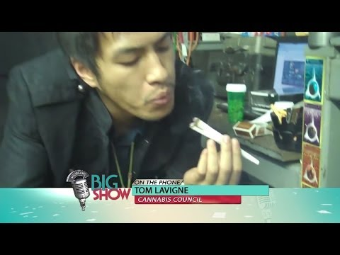 Marijuana Legalization: Michigan's Big Show