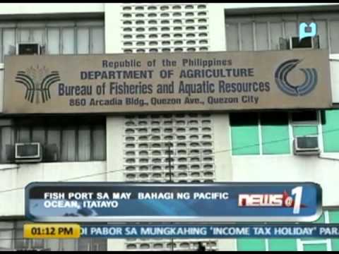 News@1: Fish port sa may bahagi ng Pacific Ocean, itatayo