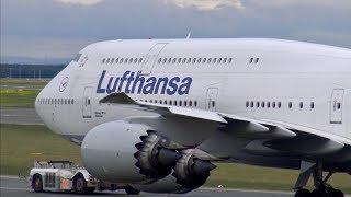 [4K] 3 HOURS!! Heavy Traffic at Frankfurt Airport   B747, B777, A350, A380 & More