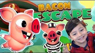 Bacon Escape Gameplay | El Cerdito se Escapa | Juegos para niños