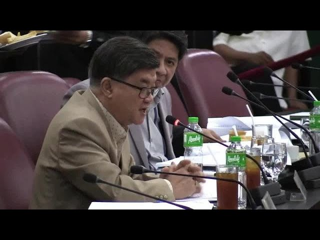 Aguirre: CJ asked me to 'tone down' request to transfer venue of Maute cases
