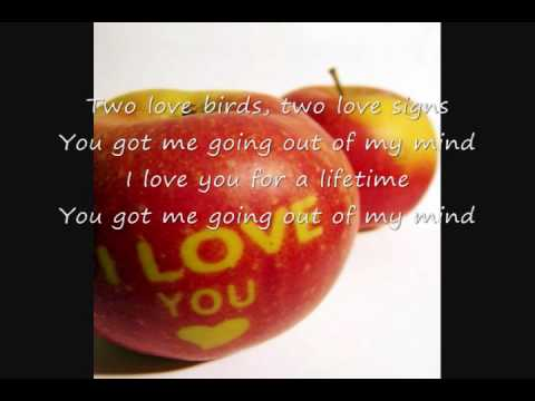 2 Love Birds By Robin Thicke video