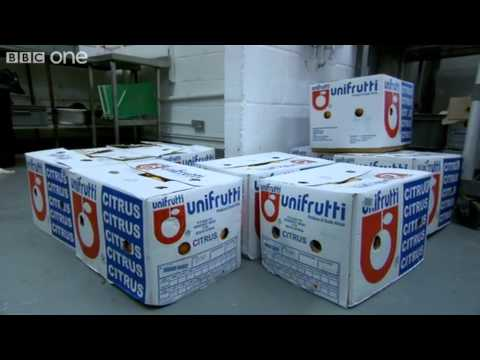Pith Panic - The Apprentice - Series 7 Episode 1 - BBC One