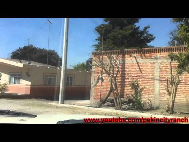 Visitando San Roque De Torres 2011