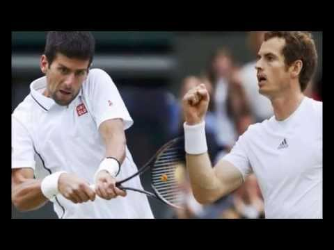 Novak Djokovic, Andy Murray Reach Wimbledon Final