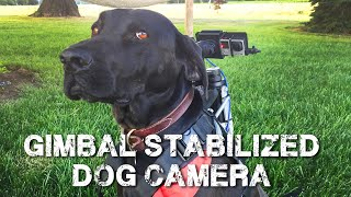 Gimbal Stabilized Camera Dog Mount (Drake Mount)