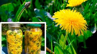 Dandelion Miracle Plant That Cures Cancer, Hepatitis, Liver, Kidneys!