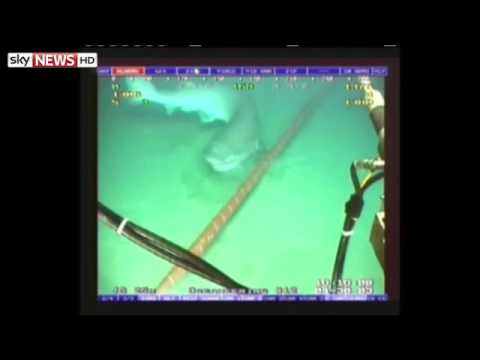 Shark Proof Google Cable To Link US And Brazil