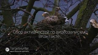 Урок№ 26 Сбор активностей по видеозаписям ВКонтакте