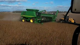 Harvesting Soybeans #GOTIME