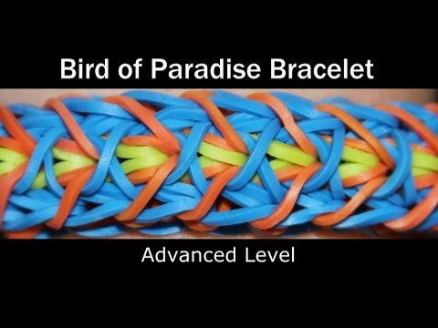 Rainbow Loom® Bird Of Paradise Bracelet video