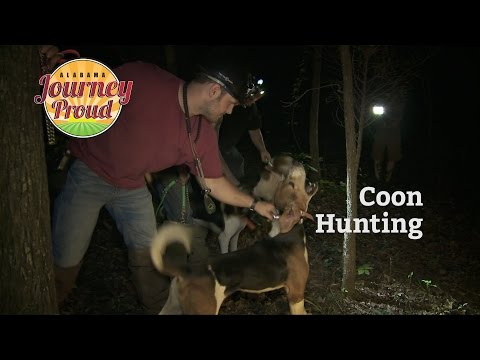 Journey Proud | Coon Hunting | Season 2 - Episode 3 | Alabam