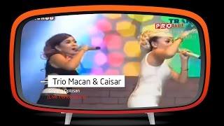 Trio Macan Feat Caisar Goyang Oplosan Live Performance