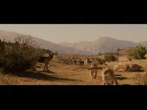 Beverly Hills Chihuahua - Chloe and Delgado - Lo Prefiero