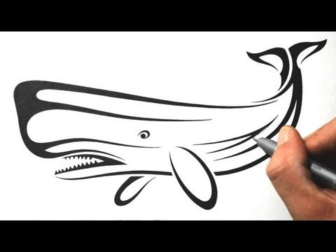 How to Draw a Whale - Tribal Tattoo Design Style