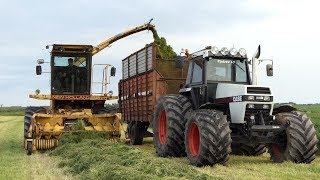 Case 2294,  Case 1270 & New Holland 1905 Working Hard in The Field | Grass Season 2019 | DK Agri