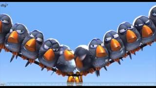 Những Chú Chim Hài Hước