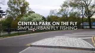 Simple Fly Fishing / Tenkara in Central Park, New York