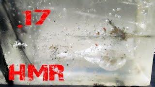 Can .17 HMR penetrate body armor?