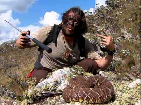 Aventura Selvagem - Os Encontros Mais Perigosos - Parte 2