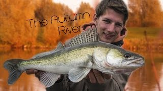 The Autumn River - Fishing The Dutch Rivers II - Full Movie