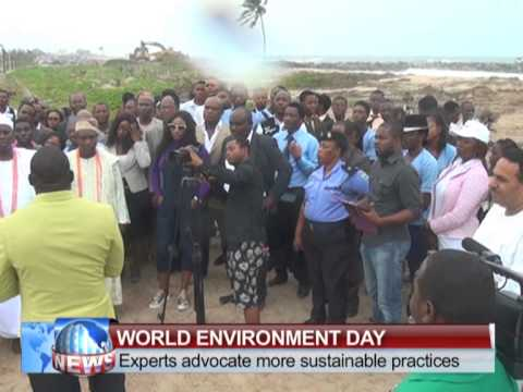 STV news coverage of NIGER-ATLANTIC RESTORATION PROJECT - FLAG-OFF ON WORLD ENVIRONMENT DAY 2015