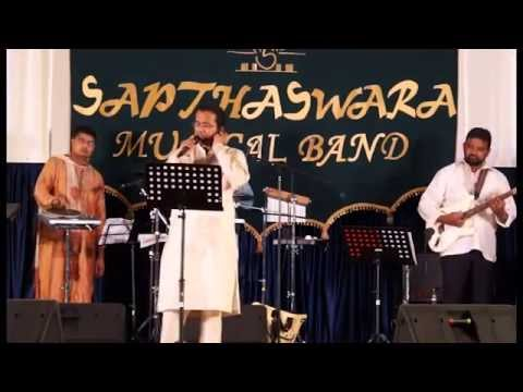 Shivashankari Shivananda Lahari - A Live Performance video