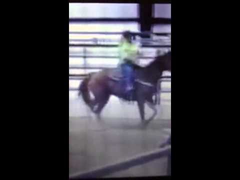 Horse I Might Be Getting video