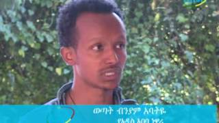 Ethiopia News Agency News
