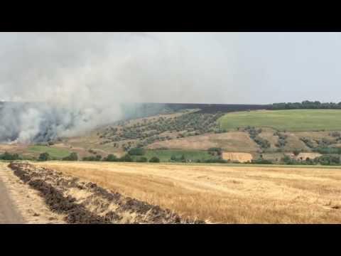 горят заповедники Тарутинского  р-н Одесской области