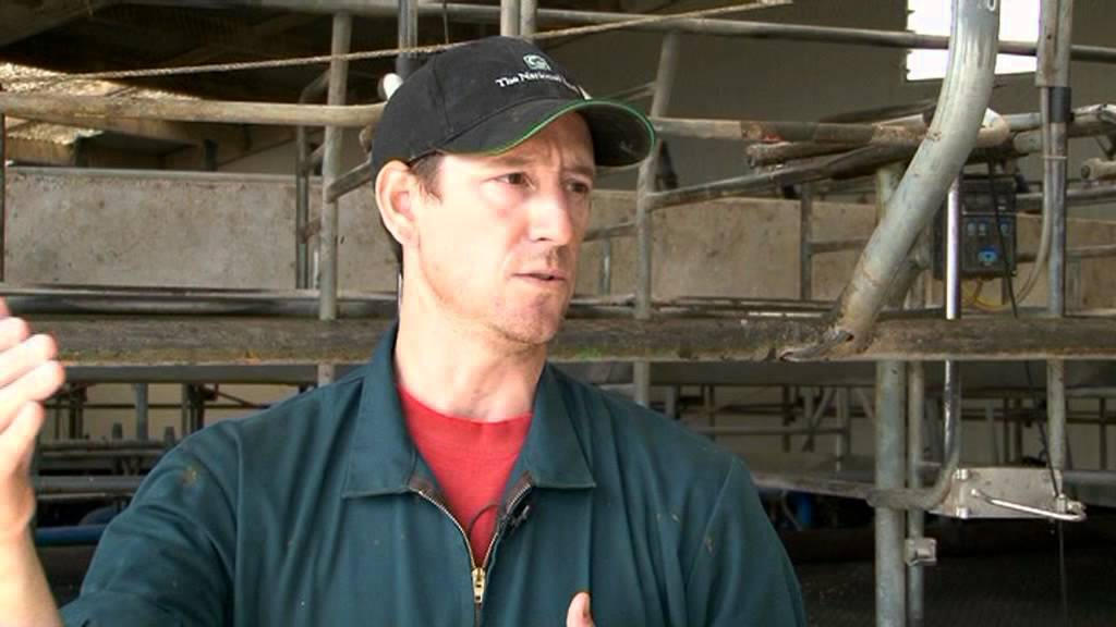 Dairy Farming in New Zealand New Zealand Dairy Careers