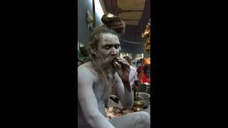 Maha Shivaratri 2012 - Naga Baba