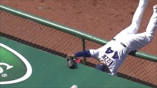 MLB Catches in the Dugout