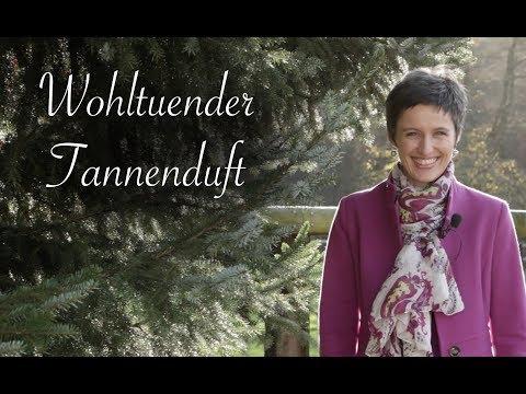 Viriditas Heilpflanzen-Video: Wohltuender Tannenduft