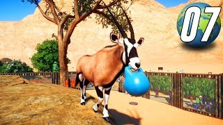 Planet Zoo Franchise - Part 7 - Gemsbok