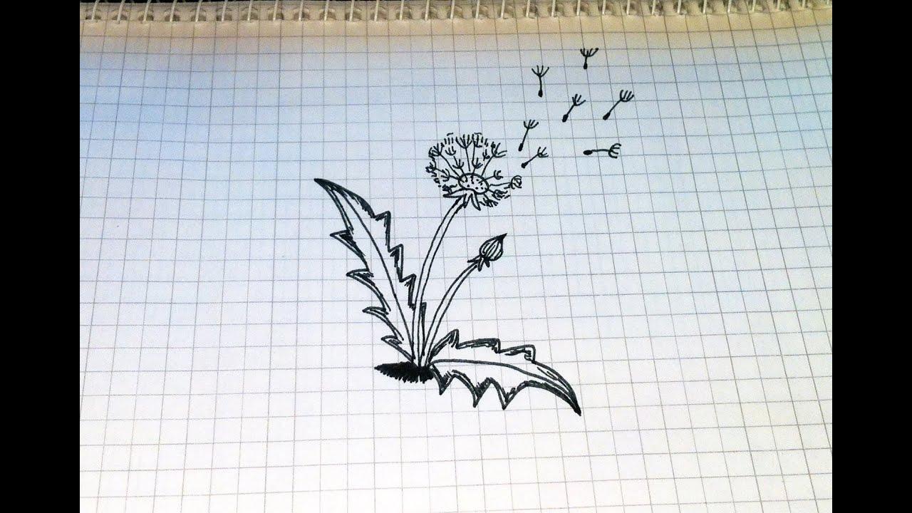 Рисунок черной гелевой ручкой легкий