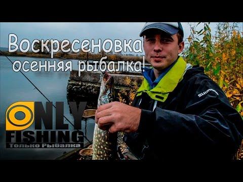 осенняя рыбалка харьков