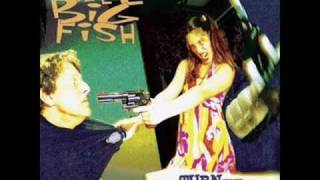 Watch Reel Big Fish Trendy video