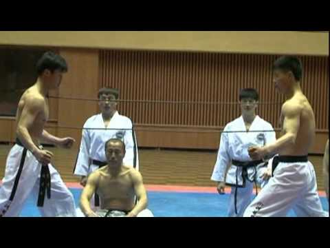Incredible Ultimate N Korean Taekwondo 태권도.flv Image 1