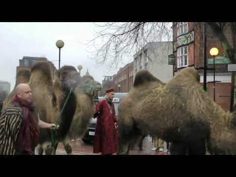 Nativity Live! Christmas procession brings camels and baby Jesus to Hull city centre