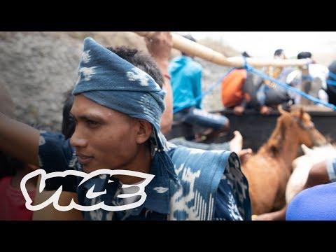 Perjalanan Panjang Meminang Perempuan Sumba: High Bride